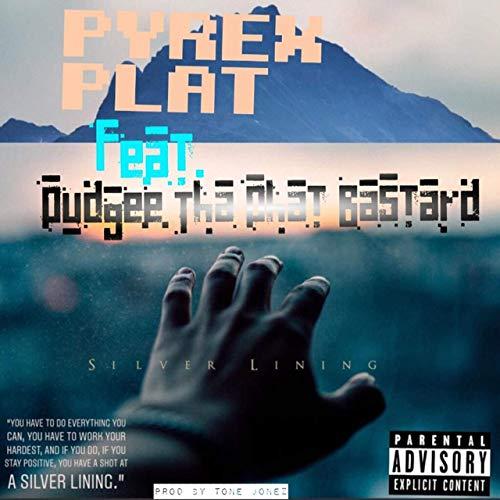 Pyrex Plat