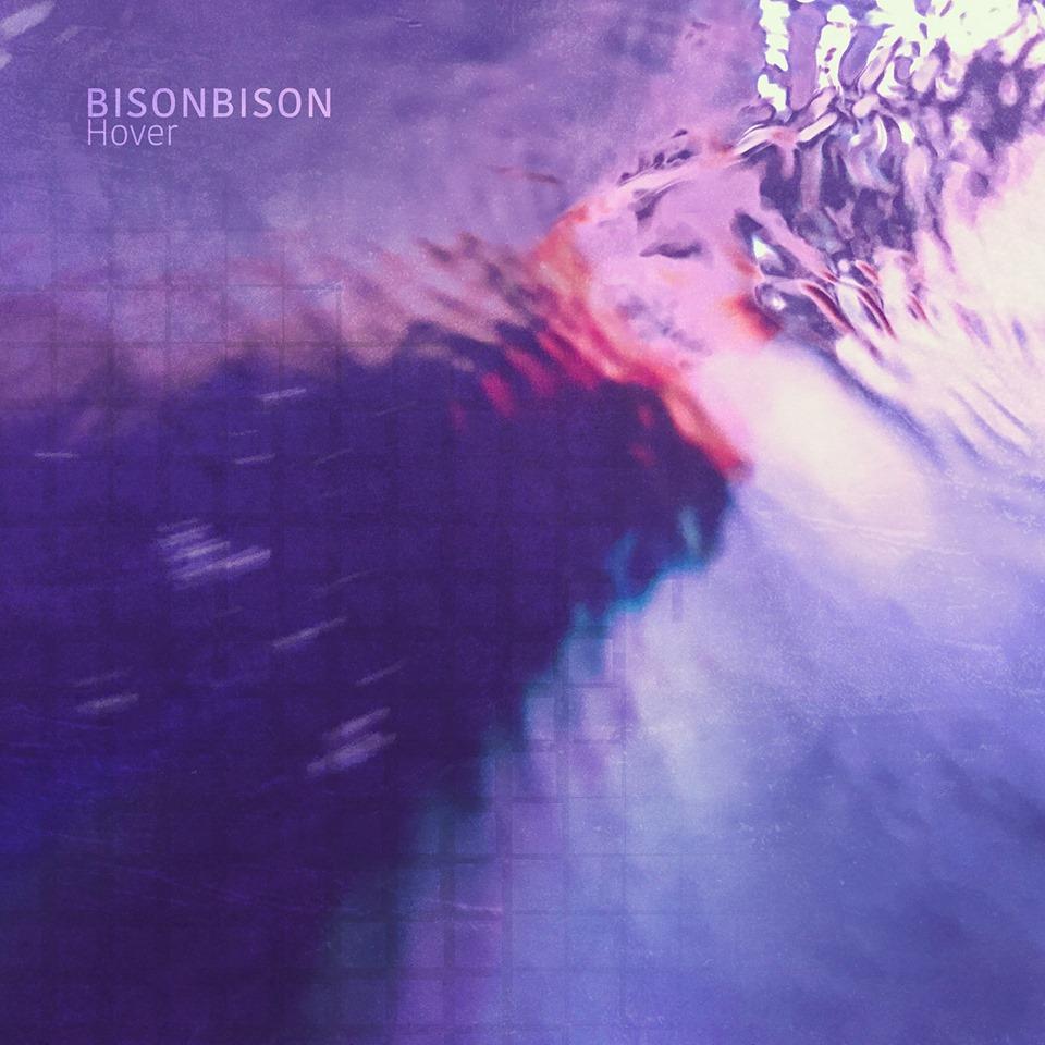 BisonBison