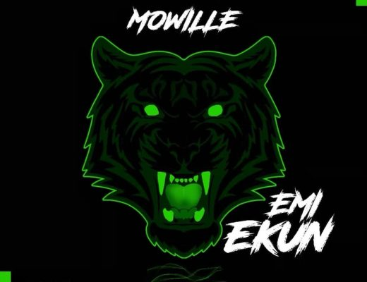 MOWILLE