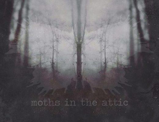 Moths in the Attic