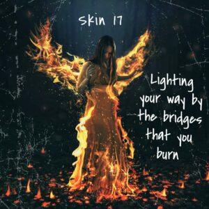 Skin 17