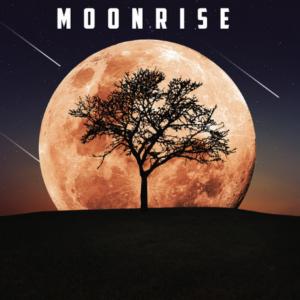 MoonLee
